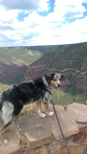 Animas overlook Durango, Colorado